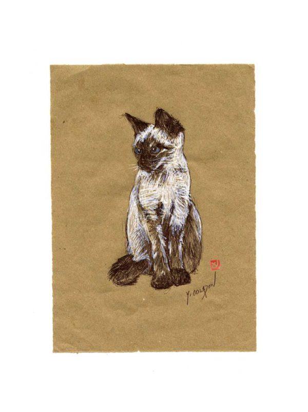 Série des chats du Pérou, le chat N°5, Yves Coladon artiste peintre graveur