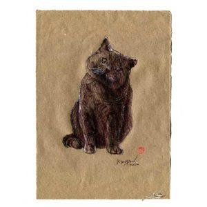 Série des chats du Pérou, le chat N°6, Yves Coladon artiste peintre graveur
