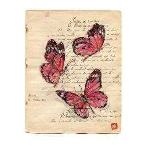 Papillons, Yves Coladon artiste peintre graveur