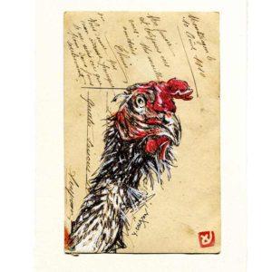 Yves-Coladon-Carte-Postale-Poule2