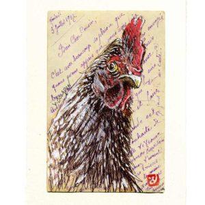 Yves-Coladon-Carte-Postale-Poule3