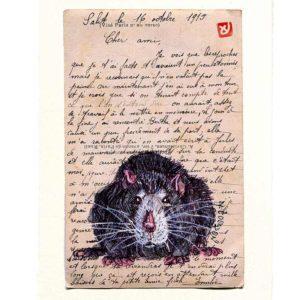 Yves-Coladon-Carte-Postale-Rat