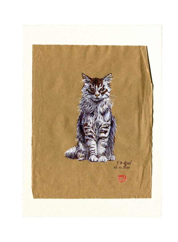 Yves-Coladon-Carte-Postale-chat1