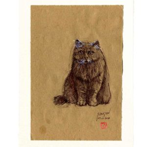 Yves-Coladon-Carte-Postale-chat4