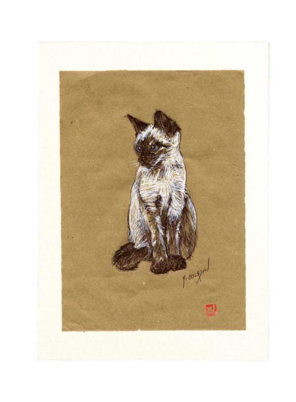 Yves-Coladon-Carte-Postale-chat5