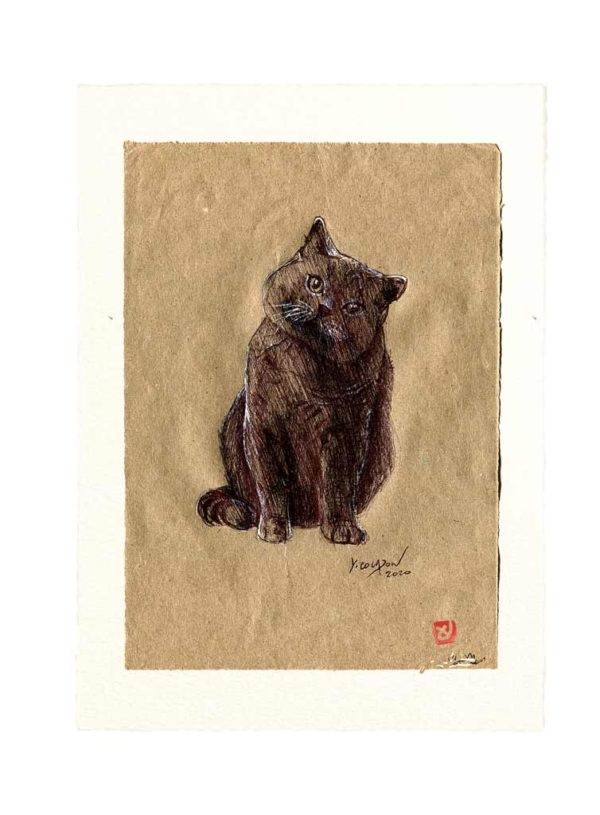 Yves-Coladon-Carte-Postale-chat6