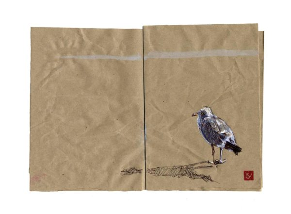 Mouette-grau-du-roi-Yves-Coladon-Artiste-Dieulefit-Drome